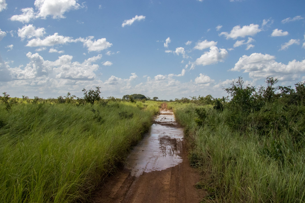 muddy road - Gabon