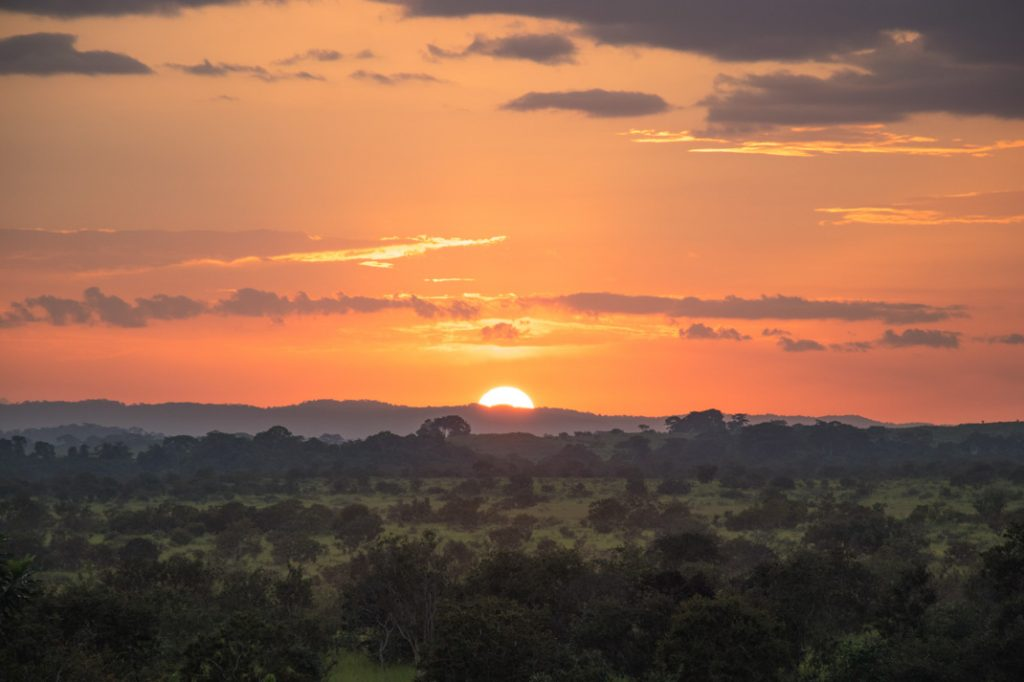 sun setting, Republic of the Congo