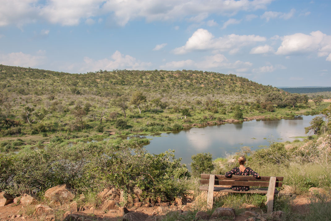 Kruger Viewpoint