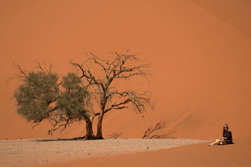 sandy dune 45