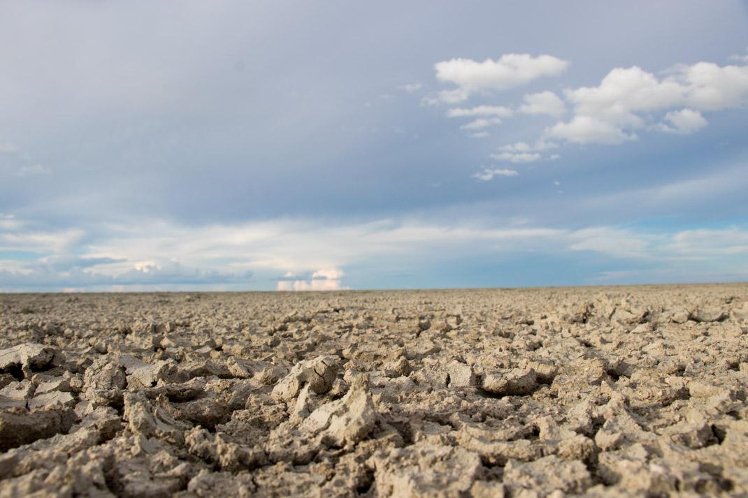 Etosha National Park scenery