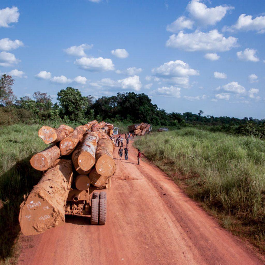 log spill, Republic of the Congo