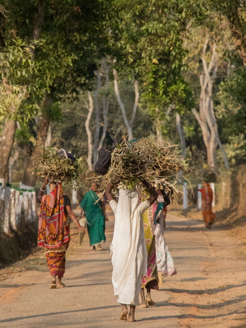 Shumshernugger Tea Workers -Bangladesh