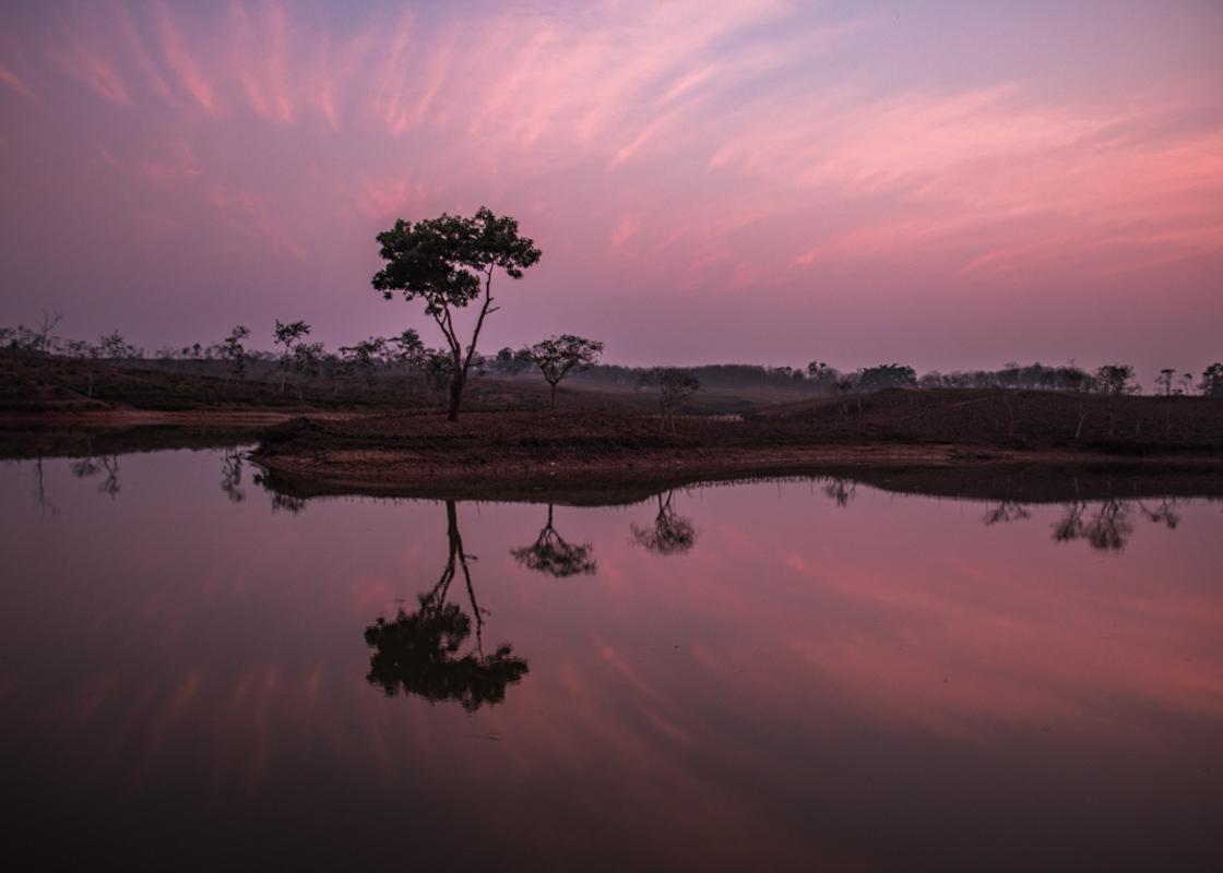 Shumshernugger Tea Estate lake sunset  - Bangladesh