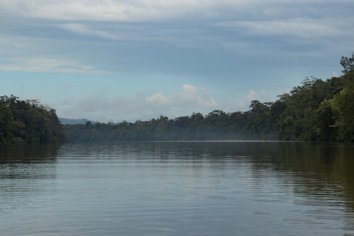 Sungai Kinabatangan, Borneo