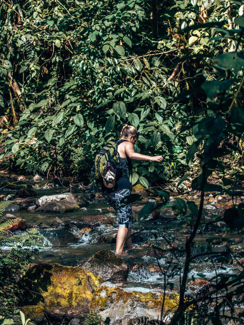 Hiking the Los Quetzales Trail - Barú Volcano National Park