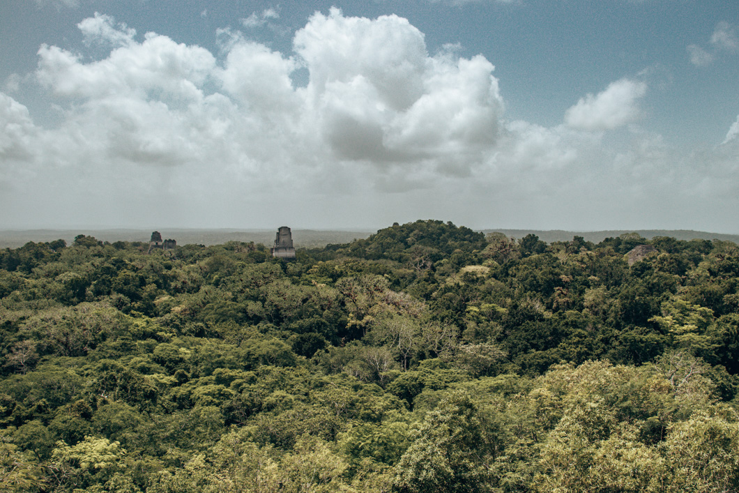 Views from Temple of the Double-Headed Serpent