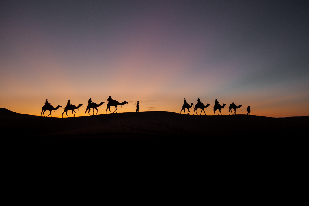 Erg Chigaga sunset camel silhouette