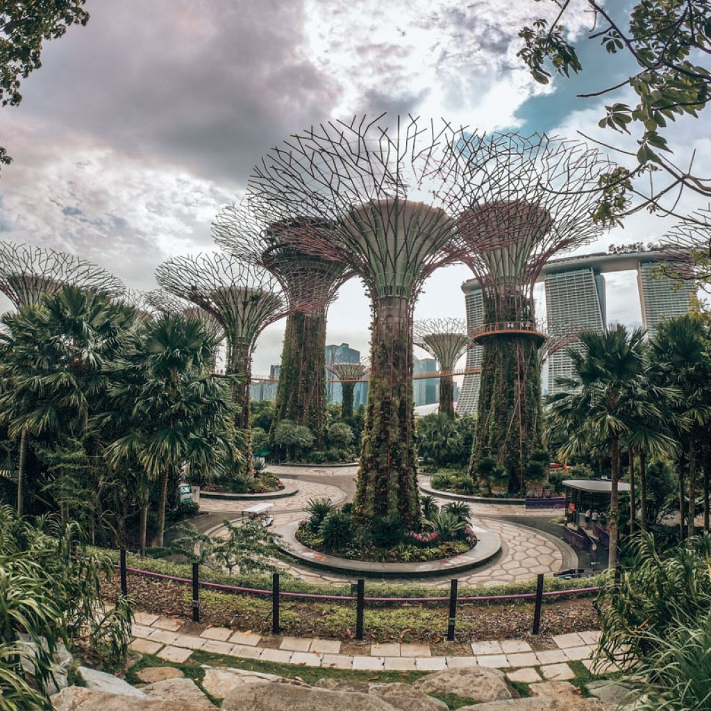 Gardens by the Bay Views - Singapore City Guide
