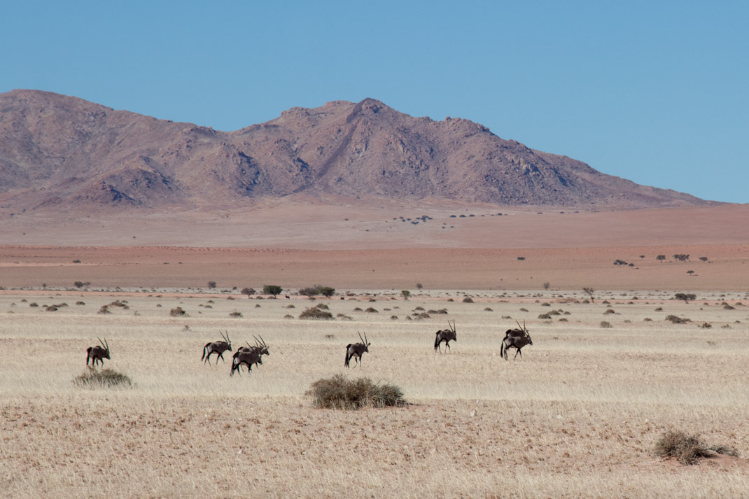 Oasis Overland - Accra to Cape Town - Namibia