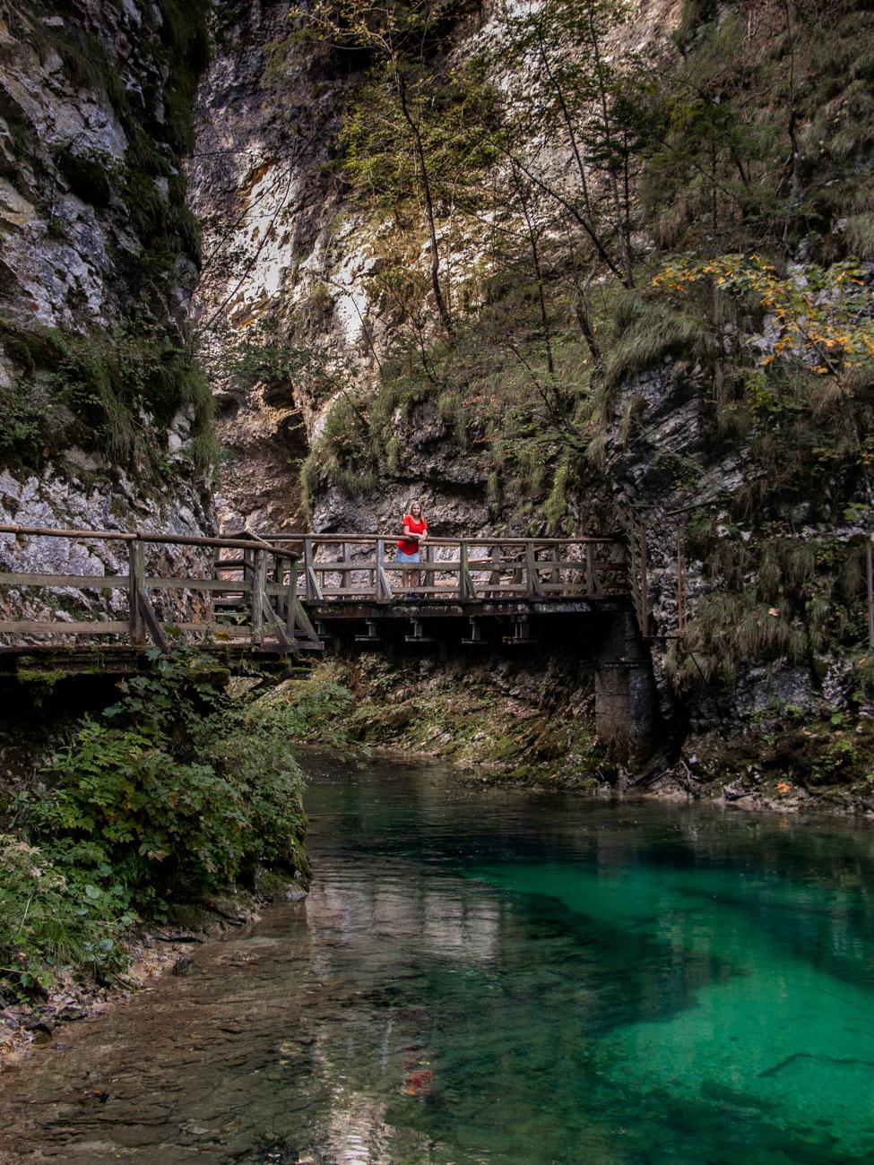 Bridge at Vintgar Gorge