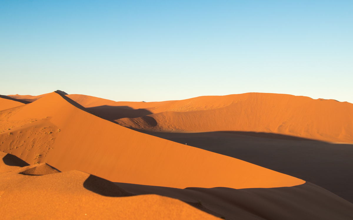 Highlights of Namibia - Dune 45