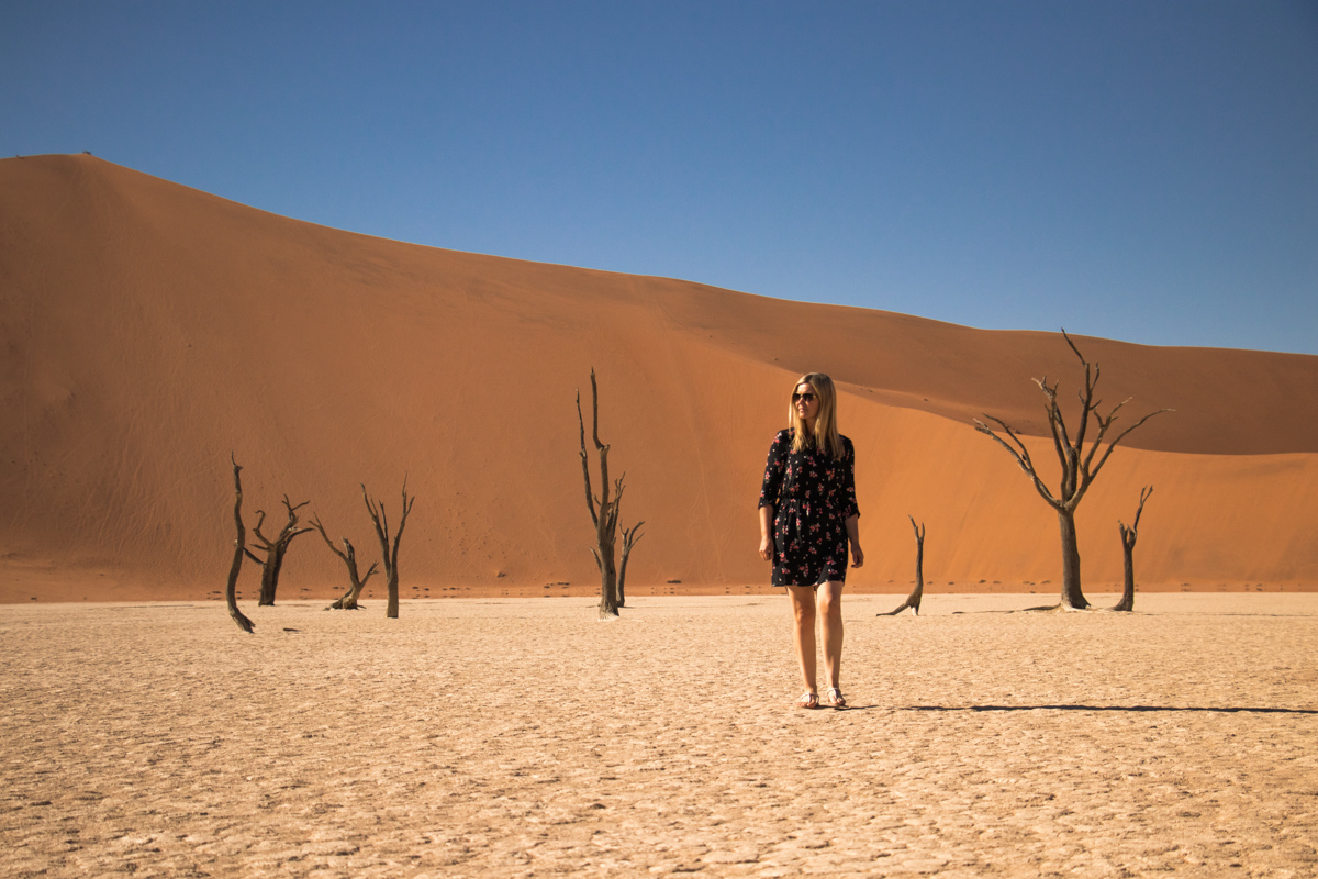 Highlights of Namibia - Deadvlei