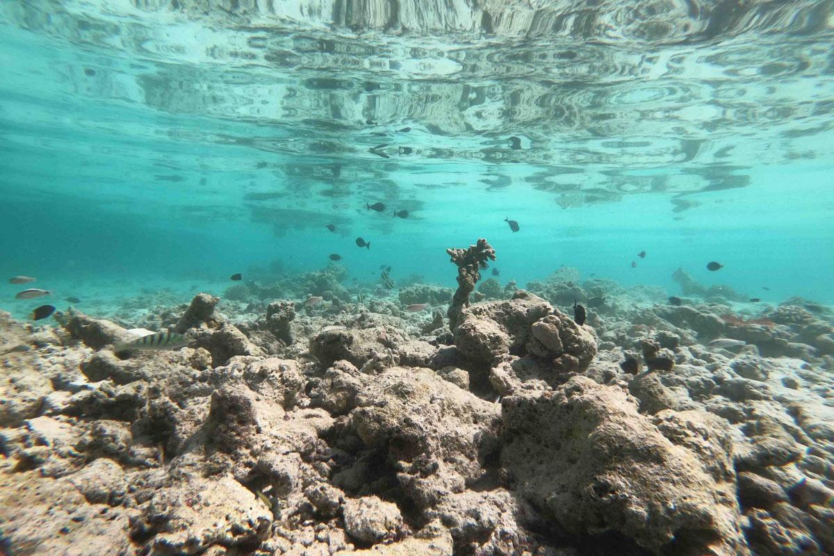 Kurumba, Sailing the Maldives