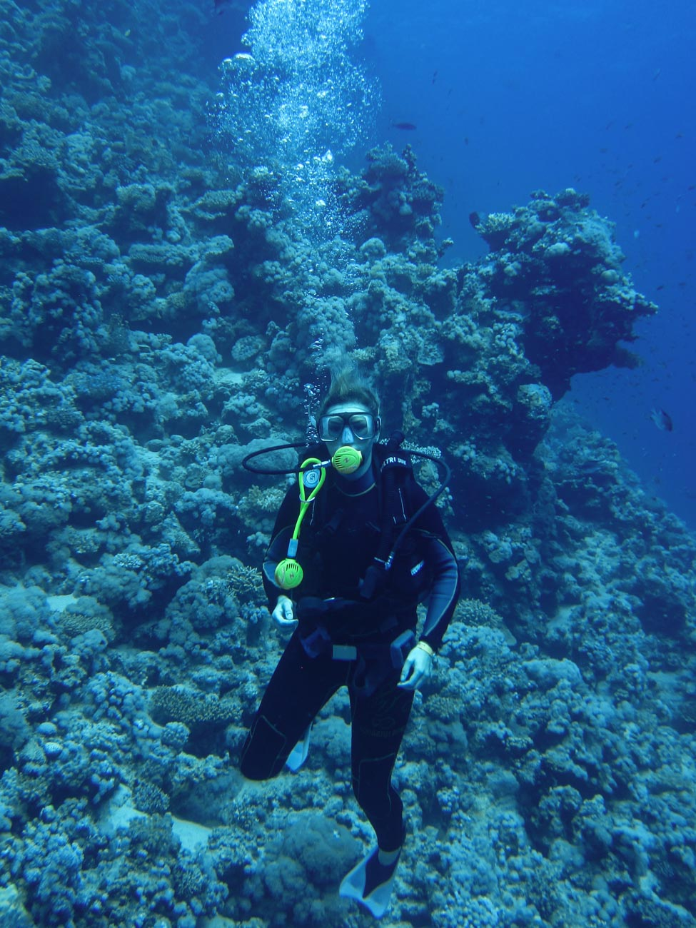 Port Ghalib House reef Egypt The Red Sea Egypt
