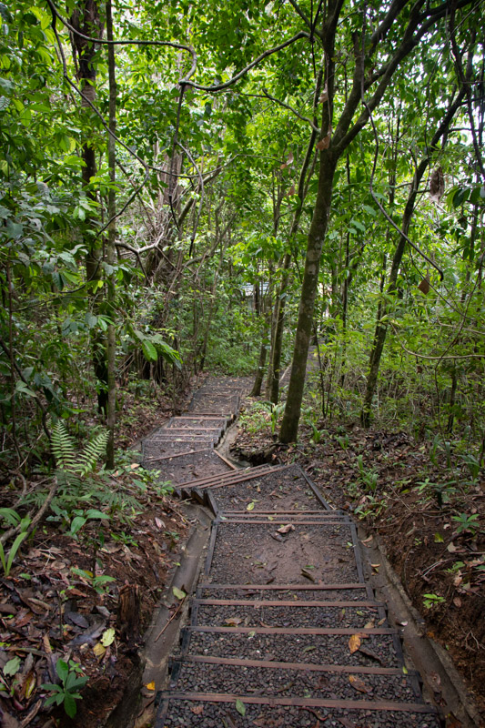 of Manuel Antonio National Park