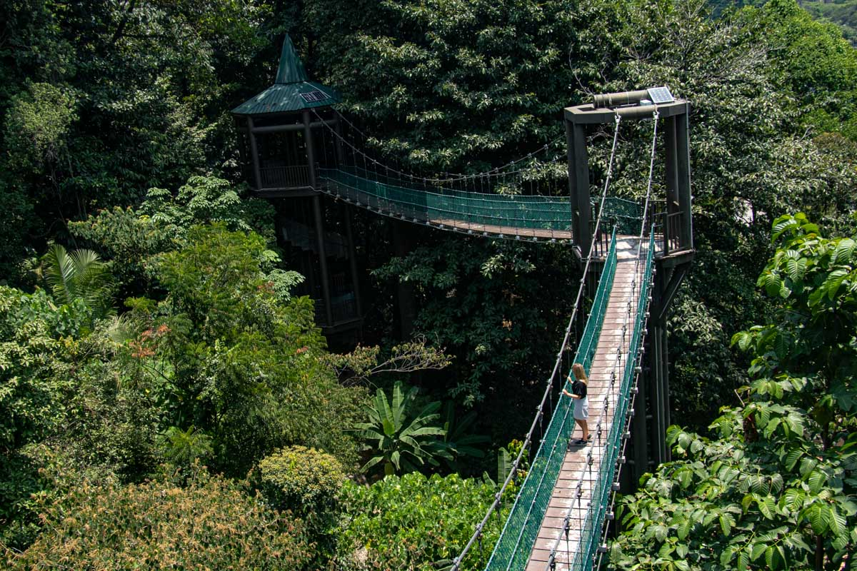 KL Forest Eco Park - must-see places in Peninsular Malaysia