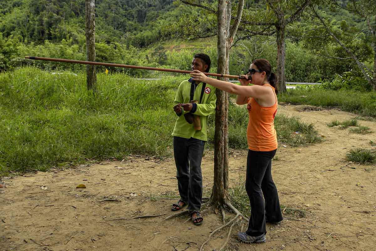 Use a blowpipe in the Cameron Highlands