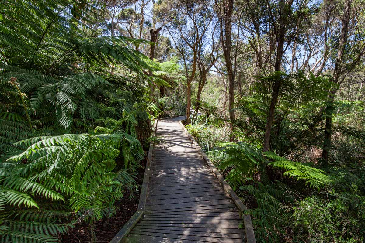 Goolgowie Bushland Reserve - Two Bays Walking Track
