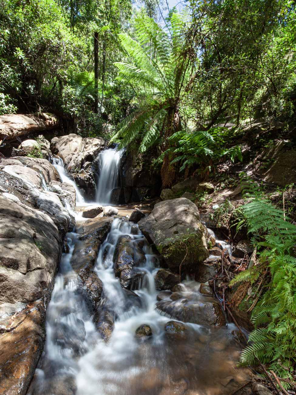 Olinda Falls The Dandenong Ranges
