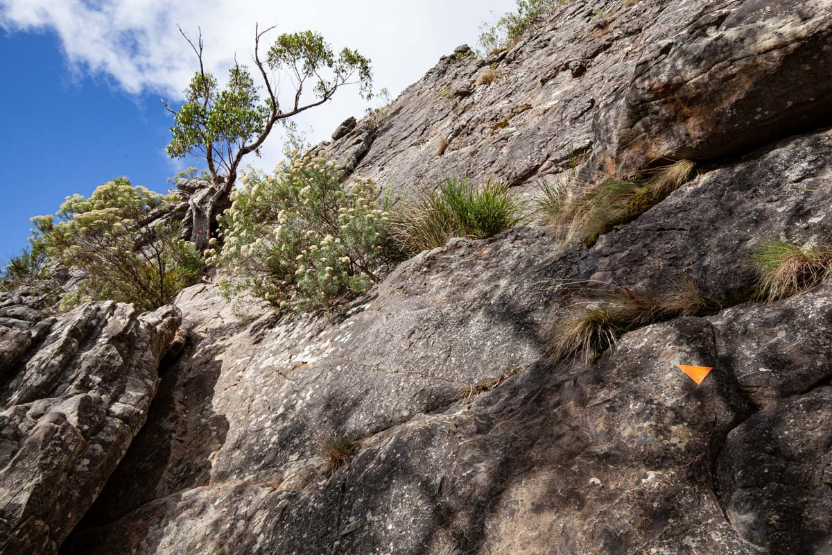Basic climbing/scrambling required on the Wells Cave Track