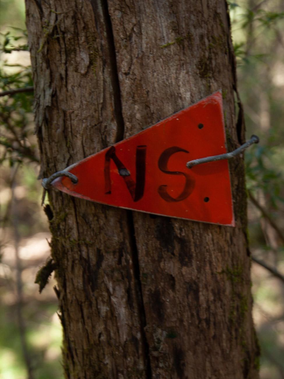 Cathedral Range - Ridgeline Circuit marker at Neds Saddle