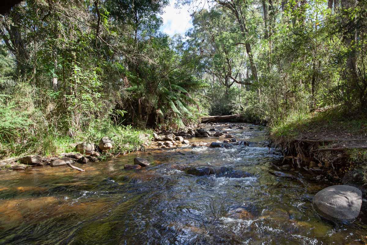 Cathedral Range - Ridgeline Circuit - Little River Track