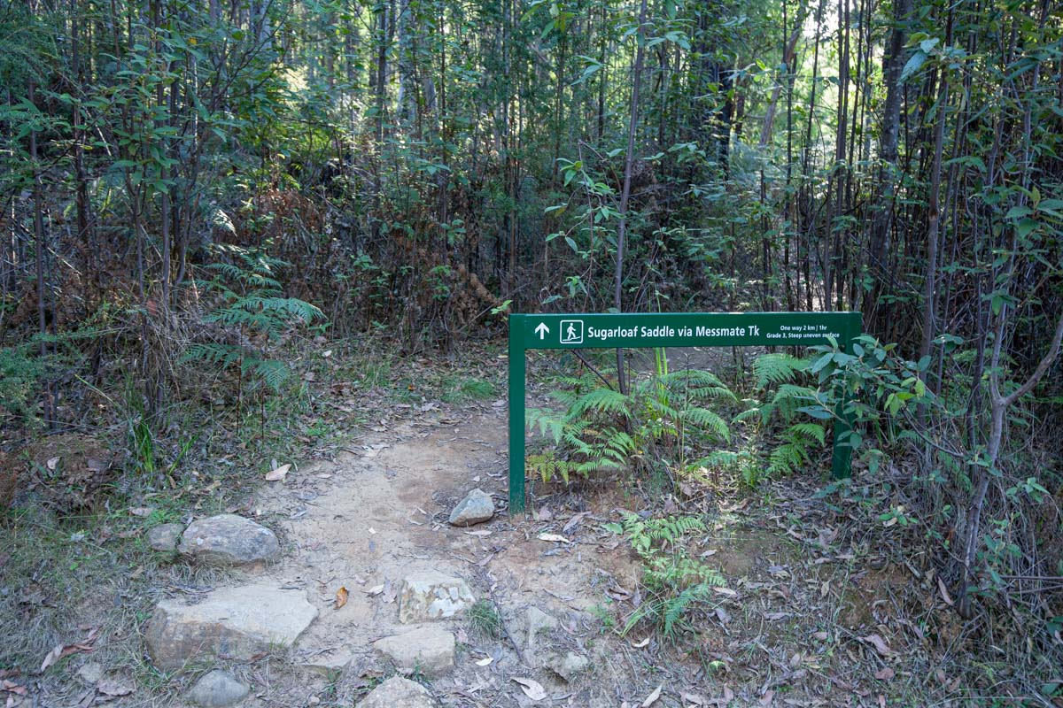 Cathedral Range - Ridgeline Circuit signage for the Messmate Track off  Tweed Spur Rd