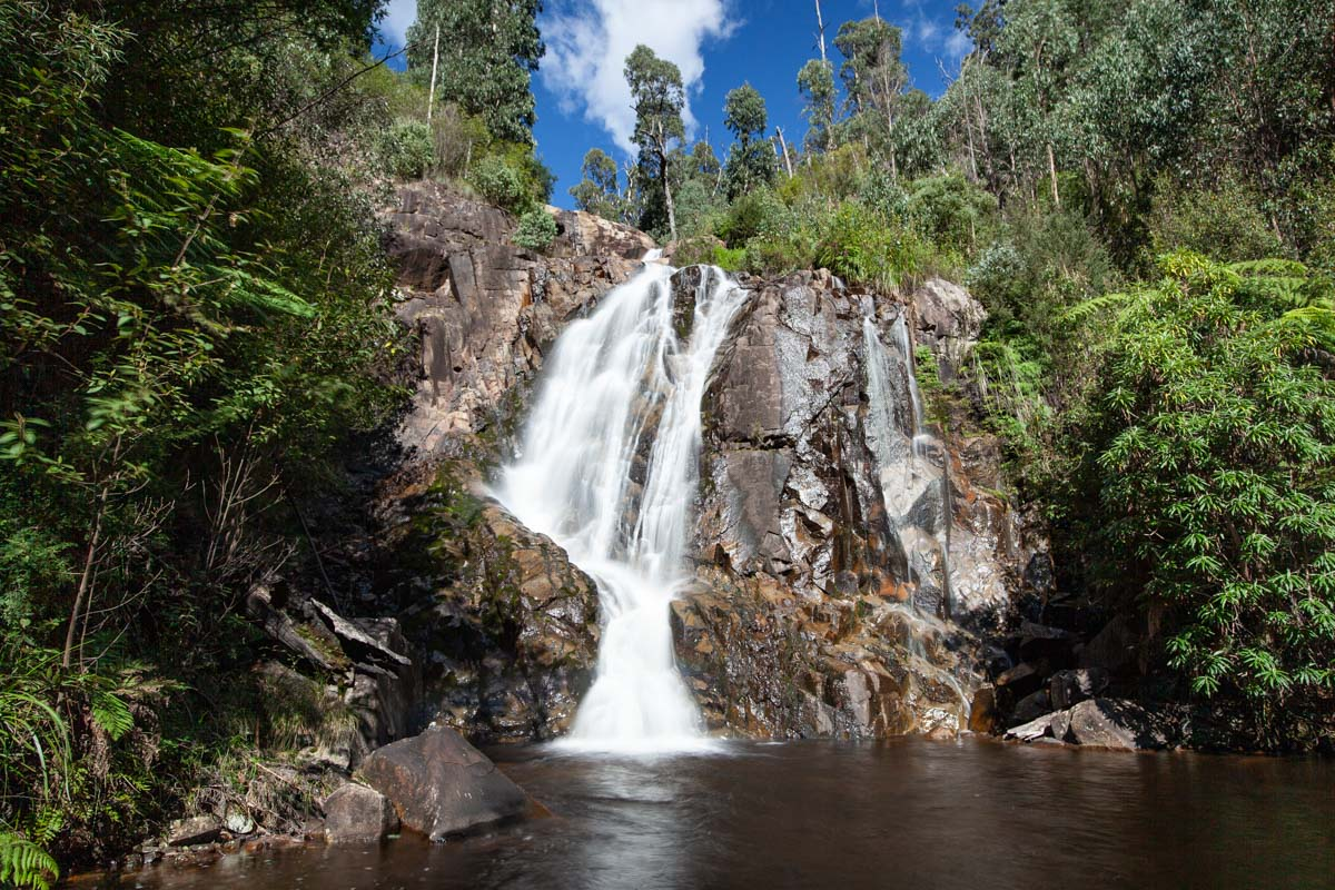 Keppel Lookout Trail - Return via Steavenson Falls and Tree Fern Gully Trail