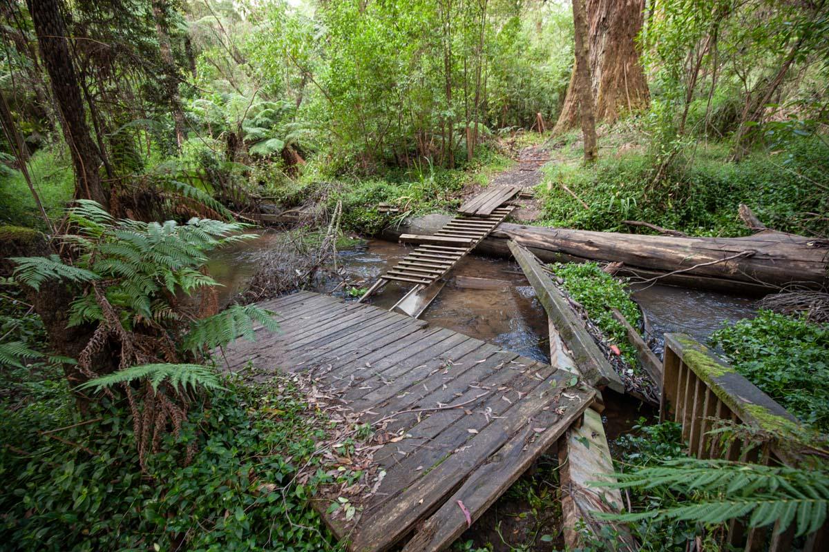 Dandenong Ranges Tourist Track - Another damaged bridge